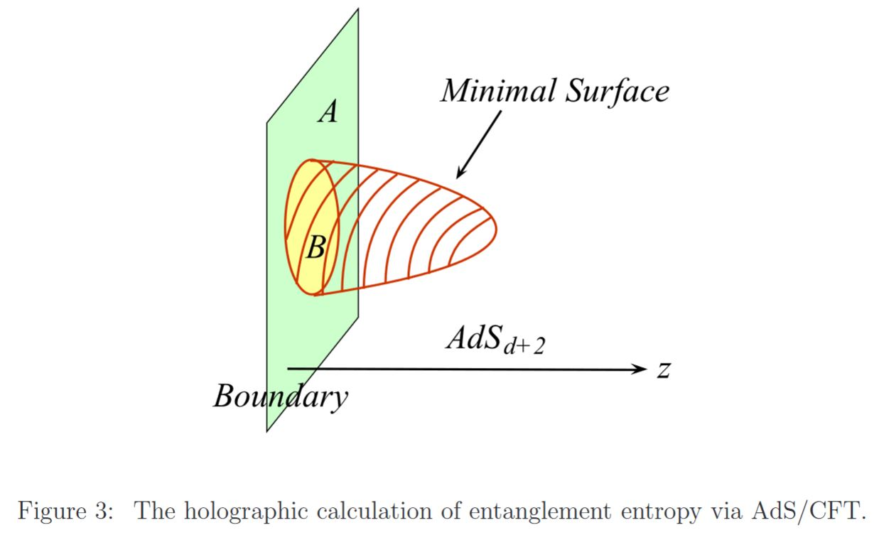 holographic entanglement entropy in nLab